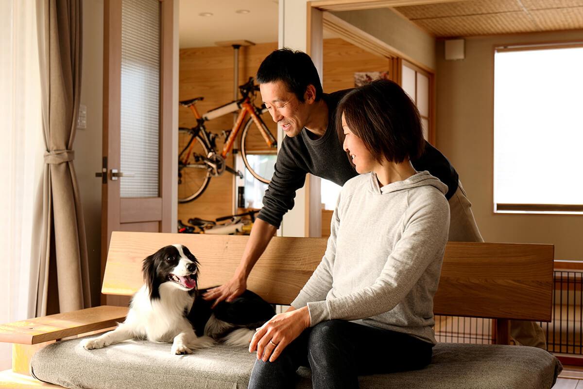 Shiawaseya-わんこのオルガと過ごすしあわせな日々