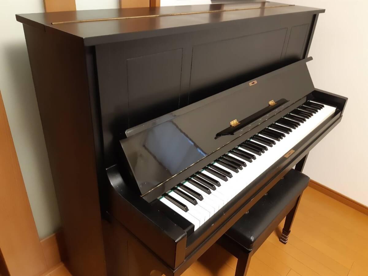 なら 弾け ピアノ もしも が た