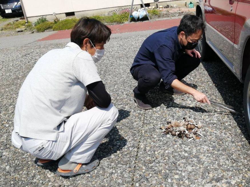Shiawaseya-環境整備