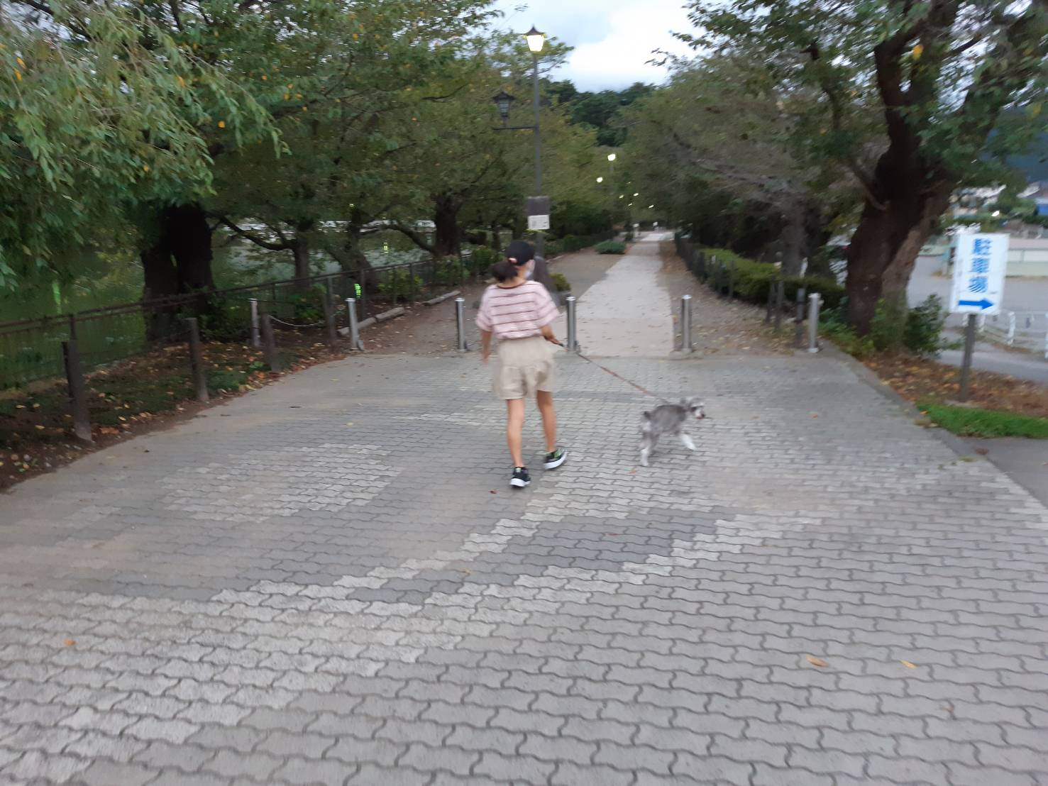 Shiawaseya-幻想的な風景 田中ブログ